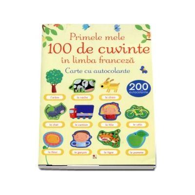 Loc de munca in franceza