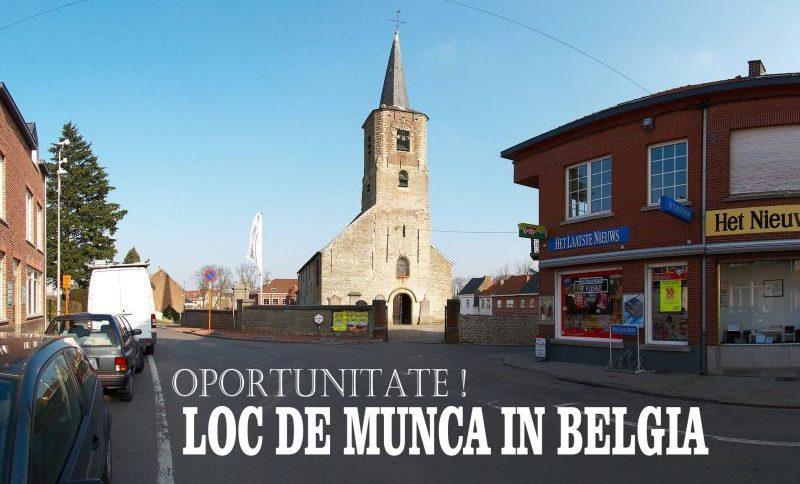 Loc de munca belgia